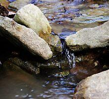 Creek by Amaelanders