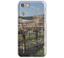 Ice Vines iPhone Case/Skin