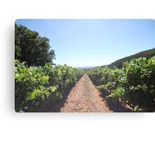 Cape Town Wine Farm Canvas Print