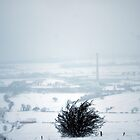 snow landscape by photography1