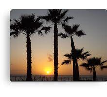 Sunset Through the Palms Canvas Print