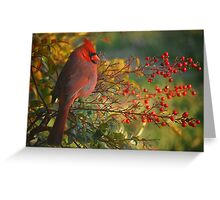 Red On Red Greeting Card