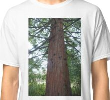 A big evergreen tree and its young  branches. Classic T-Shirt