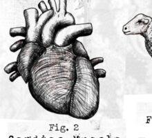 An Eye, a Heart, and a Ewe. Sticker
