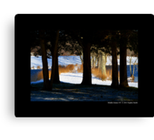 Snowy Winter Path By The Bartlett Pond Canvas Print