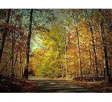 Autumn Foliage - Price Road - Green Lane PA Photographic Print