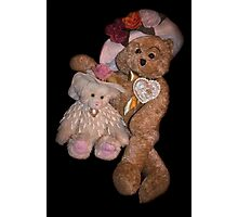 Bear Stories:  Hanging Out with Beary Good Friends Photographic Print