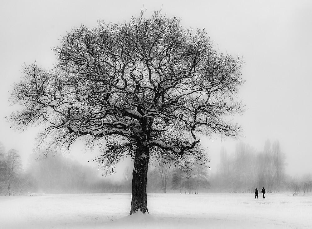 Walking in a winter wonderland by Ian Hufton
