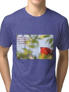 Make your own Cardinal rules and learn from them. Tri-blend T-Shirt
