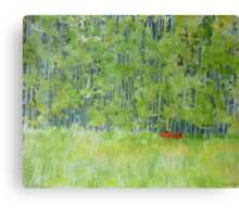 Resting on a Park bench Canvas Print