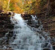 Fall Colors Crowning F. L. Ricketts Falls by Gene Walls