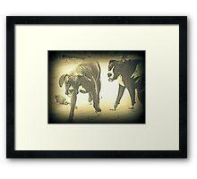 Boxers At Play Framed Print