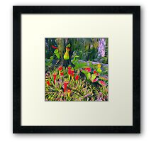 Flower cactus Framed Print
