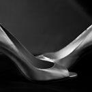 Still Life - Heels by rsangsterkelly