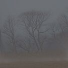 Alone in the Mist by Lisa Holmgreen
