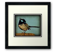 A Song to Sing! Framed Print