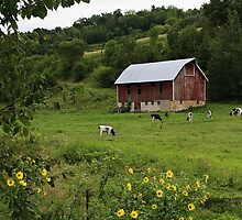 Wisconsin Dairy Farm near Arcadia by vvfineartphotog