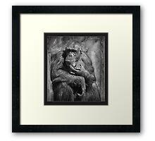 The Thinker.... Framed Print