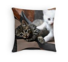 Playing cats Throw Pillow
