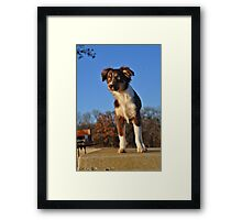 What's That??? Framed Print