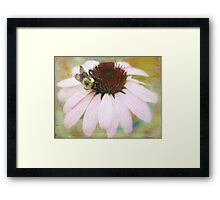 Beesotted Framed Print