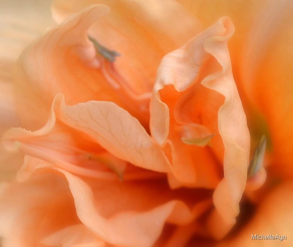 Peachy by MichelleAyn