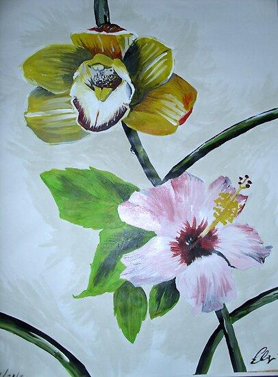 Flower patch by Eliezer  Velez JR