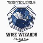 Winterhold Wizards by Miachalistic