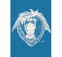 Bad Bear Grizzly Gang Photographic Print