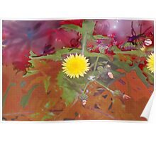 Dandelion weed in our magical world Poster