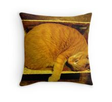 Cat in a Basket Throw Pillow
