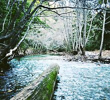 Big Sur River by Kristin Kenney