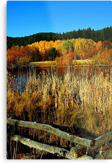 "Tahoe Pond"" by Lynn Bawden"
