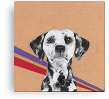 Dalmatian Canvas Print
