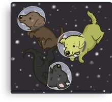 Labs In Space Canvas Print