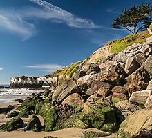 Santa Cruz 1 by James Watkins