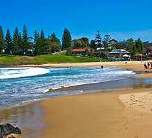 Surf Beach Day Out 1737 by Donna Bremer