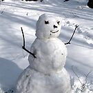Snow Man in th Woods by Rusty Katchmer