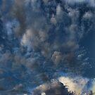 Cloud 20121111-33 by Carolyn  Fletcher