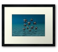 Shoal of Daft Piranha with old Duffer Fish Framed Print