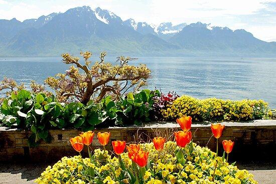 Springtime in Montreux - Switzerland by Arie Koene