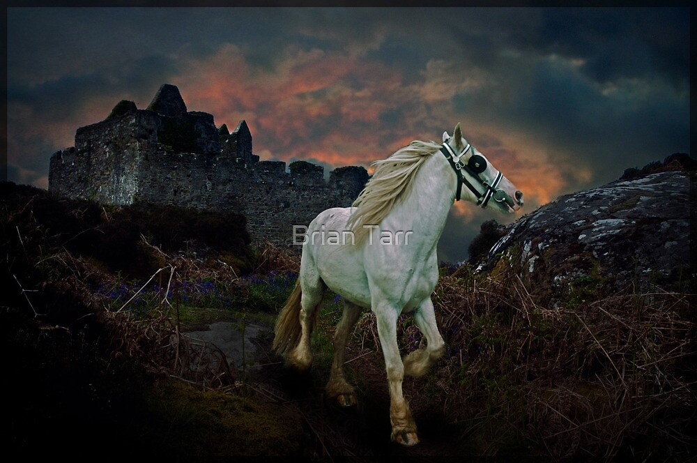 The White Gypsy Rover by Tarrby