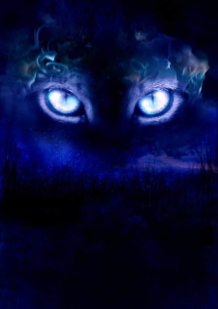 cats eyes by James Suret