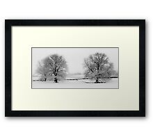 Snowy Twins (Large) Framed Print