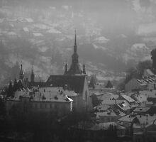Beautiful castle in winter by matheorsi