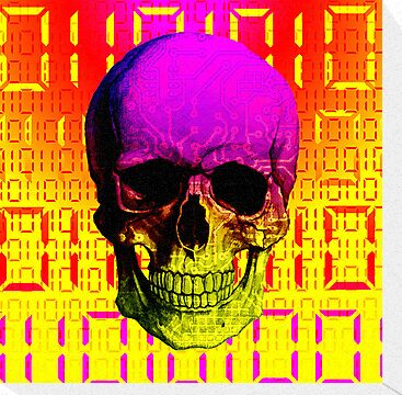 Skull circuit in a digital code. by sebmcnulty