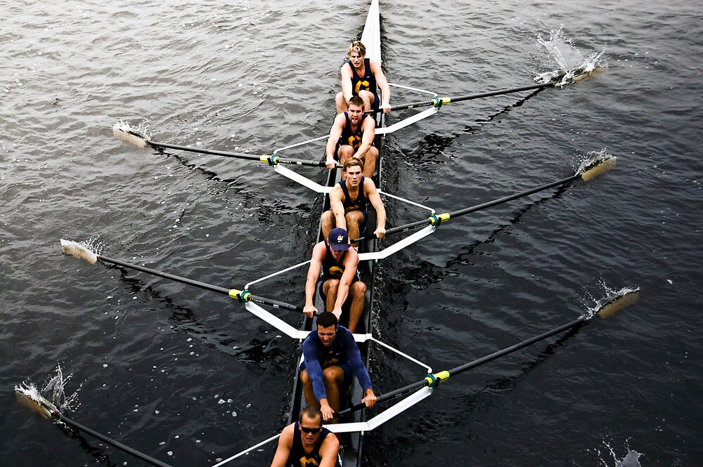 The Head Of The Charles Regatta 4 by d1373l