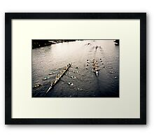 The Head Of The Charles Regatta 5 Framed Print