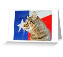 Texas Cat Greeting Card
