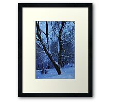 White Winter Framed Print